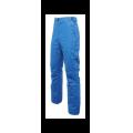 Dare2b - Брюки горнолыжные Divedown Pant
